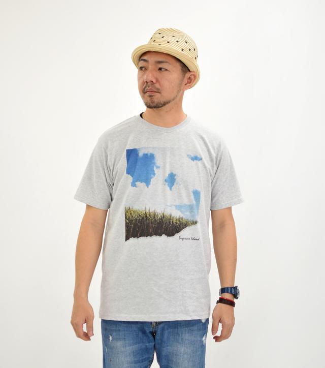 島のうーじ畑